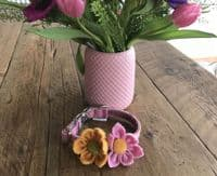 pink or yellow  flower dog  collar corsarge